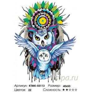 Количество цветов и сложность Сова-защитница Раскраска картина по номерам на холсте KTMK-03113