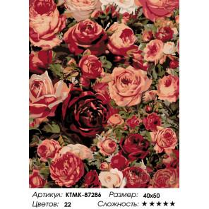 Количество цветов и сложность Множество роз Раскраска картина по номерам на холсте KTMK-87286
