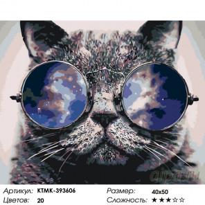 Количество цветов и сложность Стильный кот Раскраска по номерам на холсте Живопись по номерам KTMK-393606