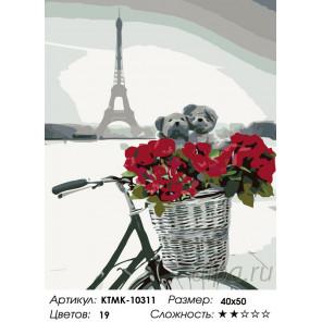 Количество цветов и сложность Влюбленные в Париже Раскраска по номерам на холсте Живопись по номерам KTMK-10311