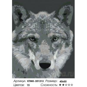 Количество цветов и сложность Серый волк Раскраска по номерам на холсте Живопись по номерам KTMK-351313