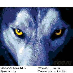 Количество цветов и сложность Пронзительный взор Раскраска по номерам на холсте Живопись по номерам KTMK-82846