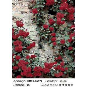 Количество цветов и сложность Стена увитая розами Раскраска по номерам на холсте Живопись по номерам KTMK-36379