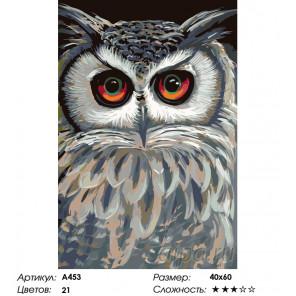 Количество цветов и сложность Совушка проснулась Раскраска по номерам на холсте Живопись по номерам A453