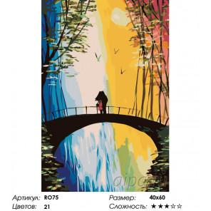 Количество цветов и сложность Свидание на мосту Раскраска по номерам на холсте Живопись по номерам RO75