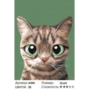 Зеленоглазик Раскраска по номерам на холсте Живопись по номерам A552