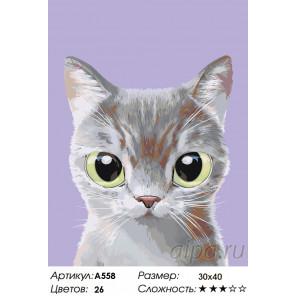 Дымка Раскраска по номерам на холсте Живопись по номерам A558