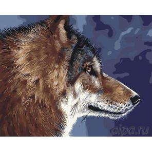 Волк Раскраска картина по номерам на холсте RA44