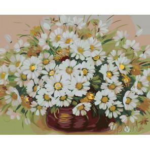 Пушистые ромашки Раскраска картина по номерам на холсте KTMK-23177