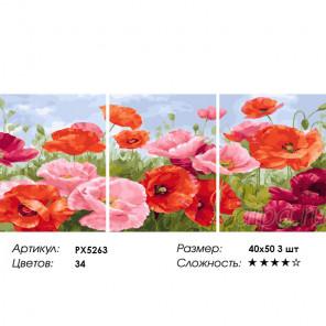 Сложность и количество цветов Маки Триптих Раскраска картина по номерам на холсте PX5263