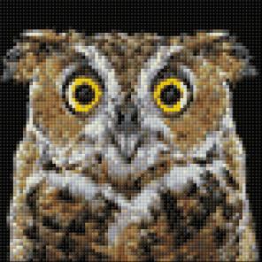 Любопытная сова Алмазная вышивка мозаика Гранни AG2351