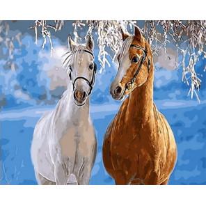 Парочка лошадей Раскраска картина по номерам на холсте Z-GX31608
