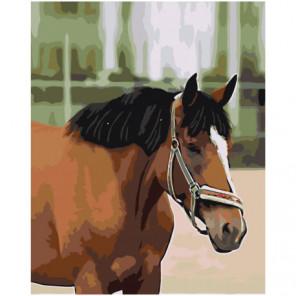 Гнедой конь Раскраска картина по номерам на холсте