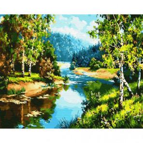 Тихий лесок Раскраска картина по номерам на холсте