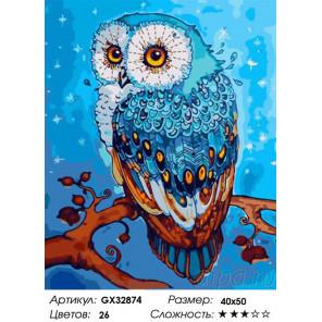 Сложность и количество цветов Зимняя сова Раскраска картина по номерам на холсте GX32874