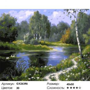 Сложность и количество цветов Тропинка вдоль водоема Раскраска картина по номерам на холсте GX26346