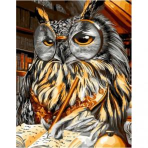 Ученая сова Раскраска картина по номерам на холсте