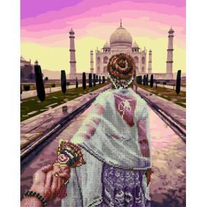 Следуй за мной. Индия Алмазная картина-раскраска по номерам на подрамнике GZS1082