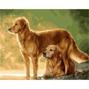 Дружба Раскраска картина по номерам на холсте