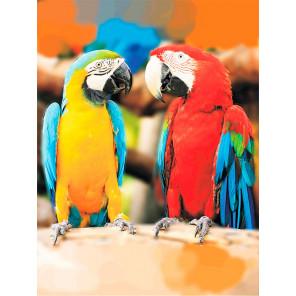 Попугаи Ара Алмазная мозаика на подрамнике LE106