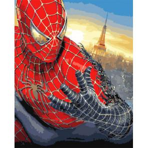 Человек-паук Раскраска картина по номерам на холсте GX31428
