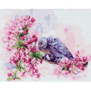 Поцелуй голубой совы Раскраска картина по номерам на холсте ZX 23724