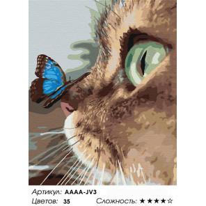 Количество цветов и сложность Котёнок и бабочка на носу Раскраска картина по номерам на холсте AAAA-JV3-100x125