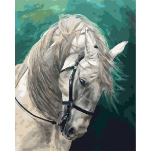 Белая лошадь Раскраска картина по номерам на холсте PK59057