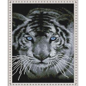 Взгляд белого тигра Алмазная вышивка мозаика на подрамнике EQ10365