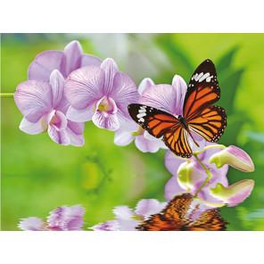 Бабочка на ветке Алмазная частичная вышивка (мозаика) Molly KM0723