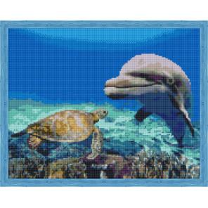 Морские друзья Алмазная мозаика на подрамнике QA204141