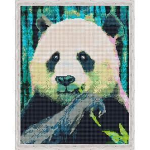 Панда на обеде Алмазная мозаика на подрамнике QA204139