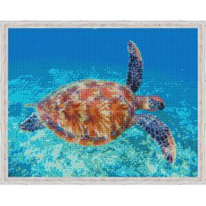 Подводный мир Алмазная мозаика на подрамнике QA204140