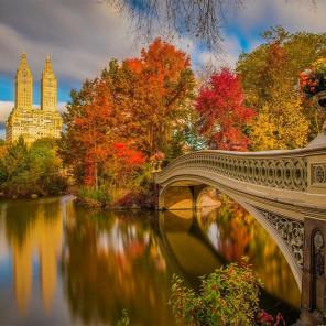 Парк в Нью-Йорке Алмазная мозаика вышивка без подрамника Molly KM0236