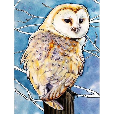 ME1124 Амбарная сова Раскраска картина по номерам на ...