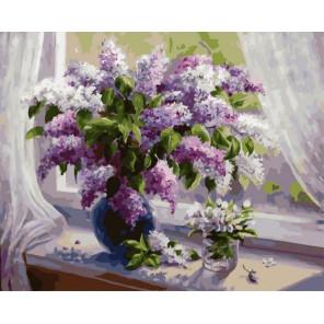 Весна Раскраска картина по номерам на холсте PK79012