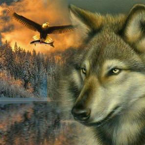 Волк и орёл Алмазная мозаика вышивка на подрамнике Molly KM0897