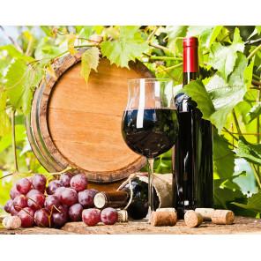 Фрукты и вино Алмазная мозаика вышивка на подрамнике Molly KM0891