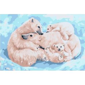 Все вместе. Семья белых медведей 20х30 см Раскраска картина по номерам на холсте PKD79060