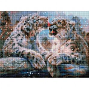 Ирбисы Алмазная мозаика на подрамнике 564-ST-S