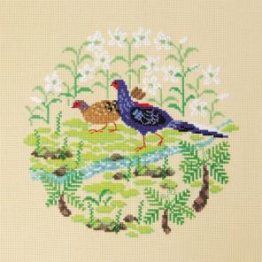 Тайваньский фазан Набор для вышивания XIU Crafts 2030409
