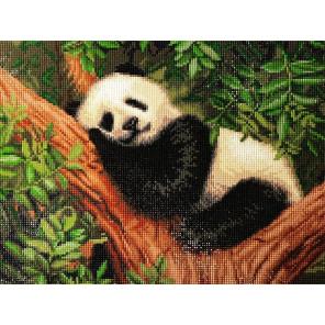 Сонная панда Алмазная вышивка мозаика АЖ-1826