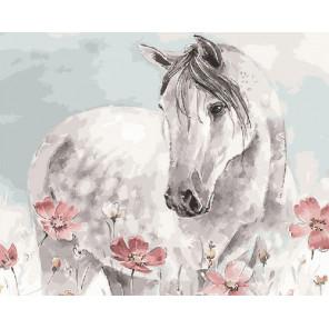 Белая лошадь Раскраска картина по номерам на холсте GX27355