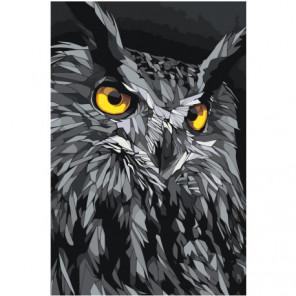Серый филин Раскраска картина по номерам на холсте