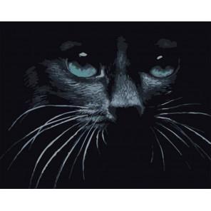 Черный кот Раскраска картина по номерам на холсте GX39178