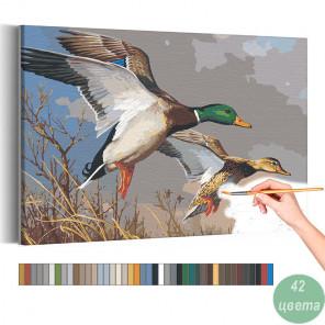 Утки над прудом осенью Раскраска картина по номерам на холсте AAAA-RS042