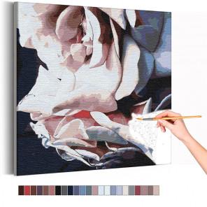 Лепестки розы Раскраска картина по номерам на холсте AAAA-RS245
