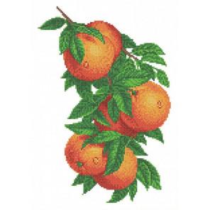 Ветка с апельсинами Габардин с рисунком для вышивки бисером Каролинка ТКБЦ 3057