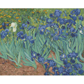 Ирисы Ван Гог Раскраска картина по номерам на холсте Color Kit CG2039
