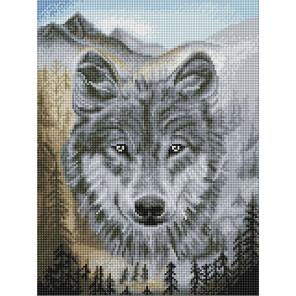 Волк Алмазная вышивка мозаика Color kit DKD1001